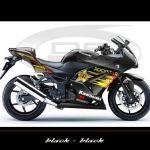 sticker-kawasaki-ninja-250-rockstar-v1-main