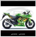 sticker-kawasaki-ninja-250-rockstar-v1-maingreen