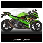 sticker-kawasaki-ninja-250-fi-alpinestar-green